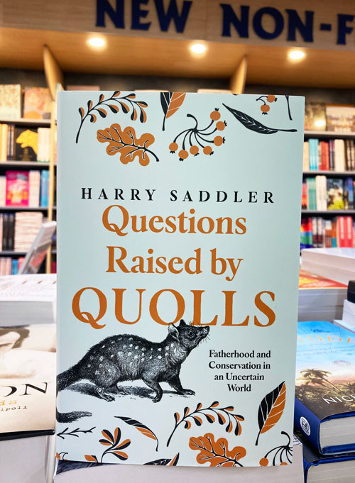 questions raised by quolls by harry saddler