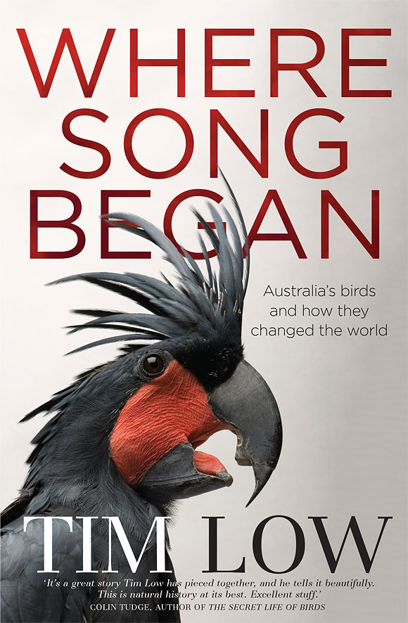Where Song Began: Australia's Birds and How They Changed the World by Tim Low at Abbey's Bookshop 131 York Street, Sydney